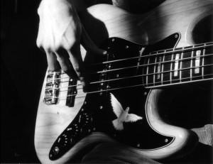 Bass b&w